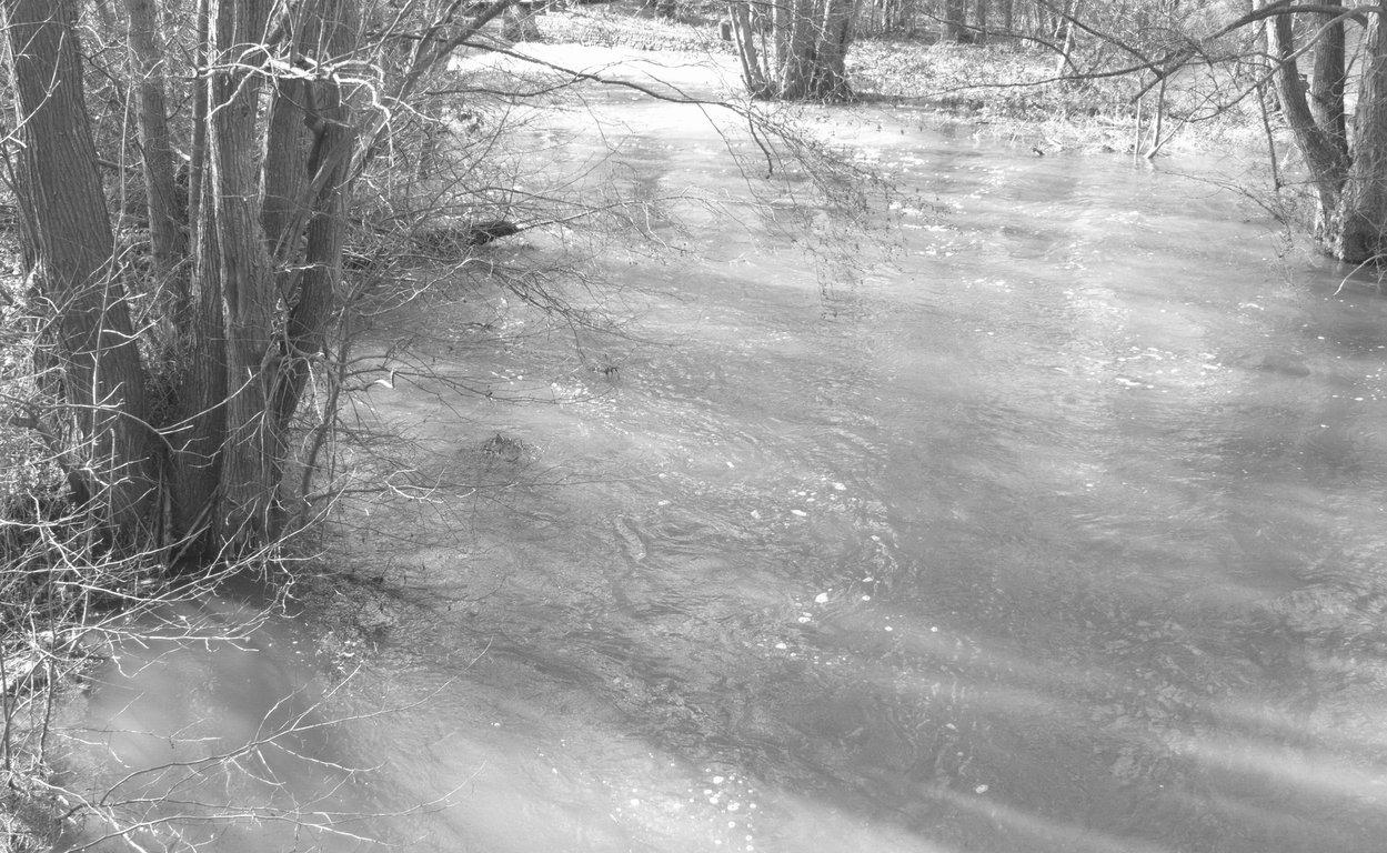 P1180798.jpg noir et blanc.jpgrecadrée